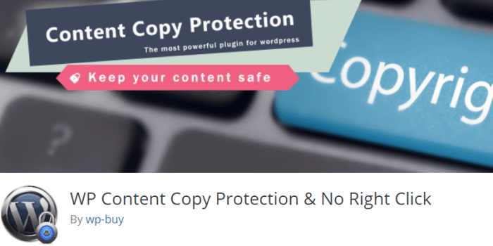 WP Content Copy Protection (Pro)